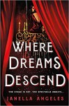 Where Dreams Descend by Janelle Angeles: The stage is set. The spectacle awaits...